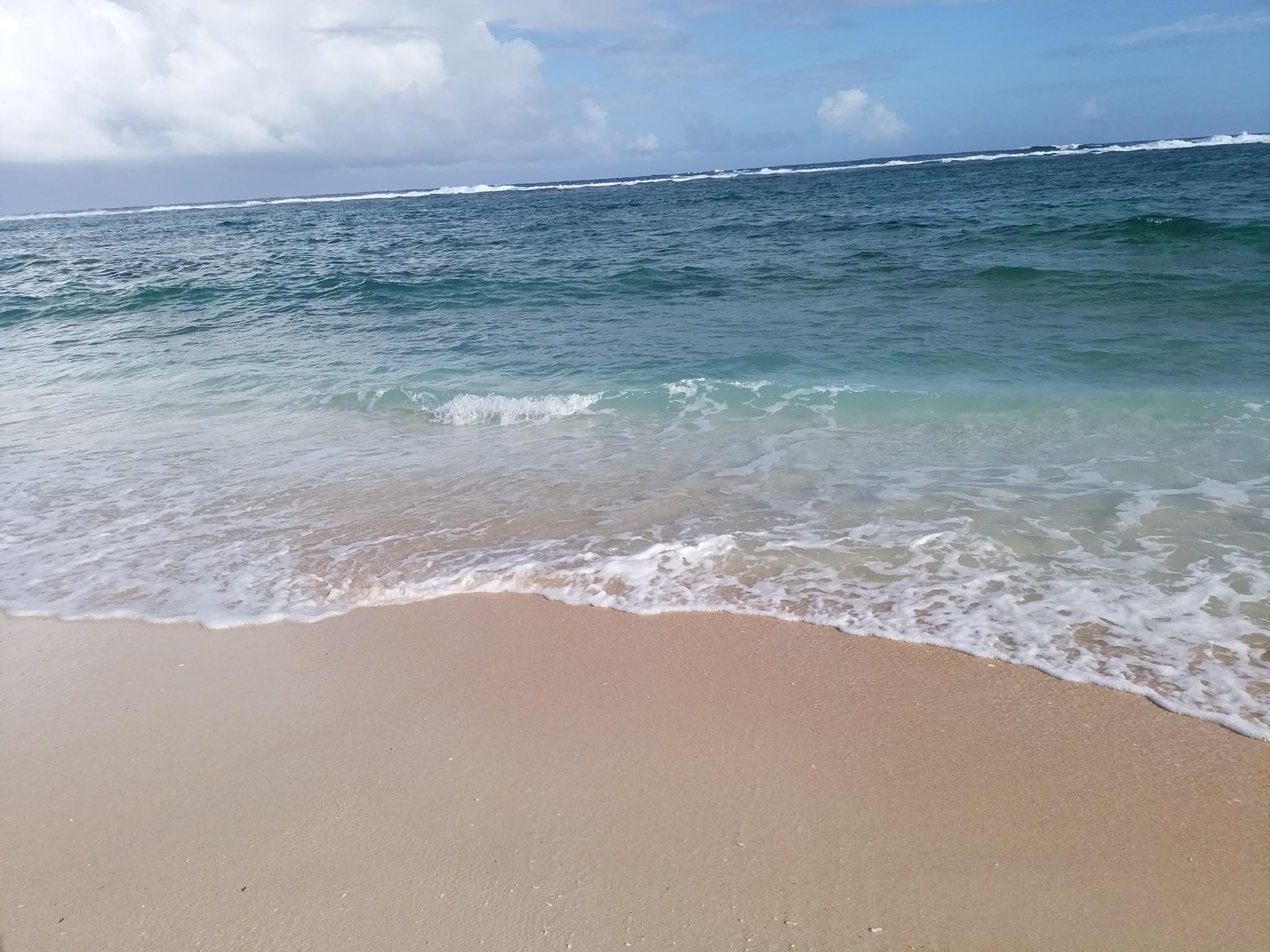 再受講したい方~6月沖縄で開催いたします♪